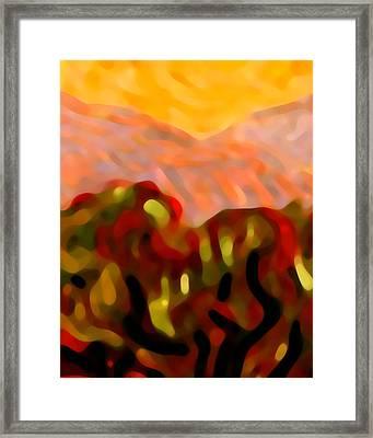 Desert Olive Trees Framed Print by Amy Vangsgard