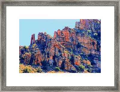Desert Paint Framed Print