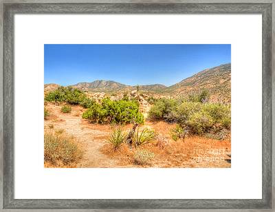 Desert Panorama Framed Print by Deborah Smolinske