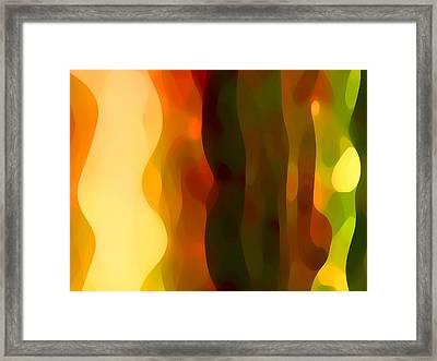 Desert Pattern 1 Framed Print by Amy Vangsgard