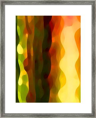 Desert Pattern 4 Framed Print by Amy Vangsgard