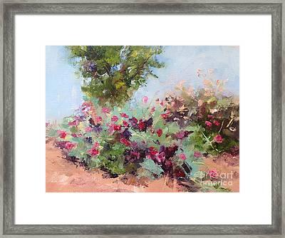Desert Plants In Bloom IIi Framed Print by Carol Hopper
