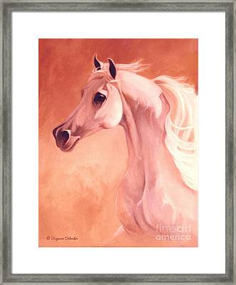 Desert Prince Arabian Stallion Framed Print by Suzanne Schaefer
