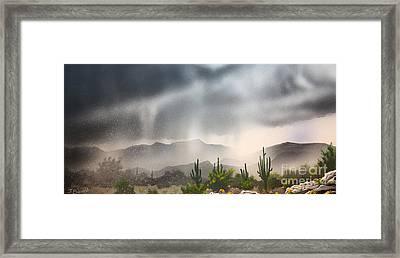 Desert Rain Framed Print