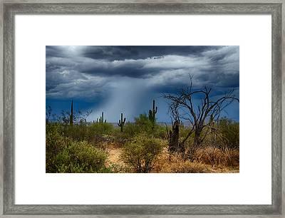 Desert Rains  Framed Print
