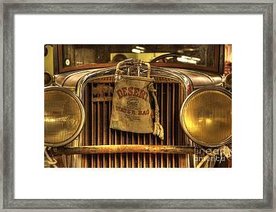 Desert Rat Framed Print by Bob Christopher