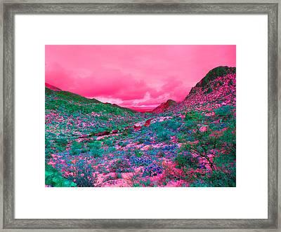 Desert Red Framed Print by Joseph Wiegand