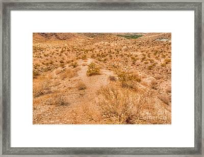 Desert Reds Framed Print by Deborah Smolinske