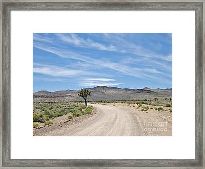 Framed Print featuring the photograph Desert Road by Marilyn Diaz