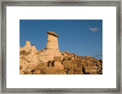 Desert Rock Garden Framed Print