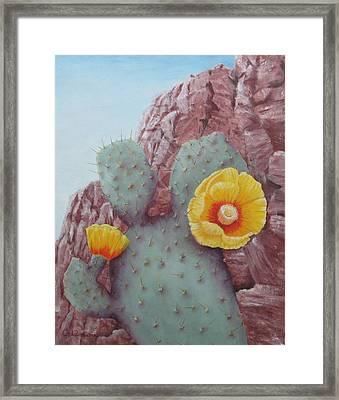 Desert Rose Framed Print