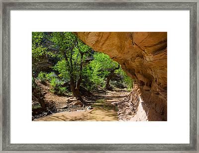 Desert Runoff Framed Print