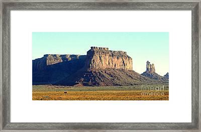 Desert Scene Usa Framed Print by John Potts