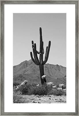 Desert Scenic - Black And White Framed Print