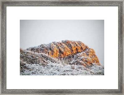 Desert Snow At Sunrise Framed Print
