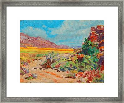 Desert Spring Flowers Namaqualand With Rock Outcrop Framed Print