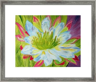 Desert Star Framed Print