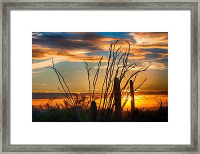 Desert Sunset Framed Print by Fred Larson