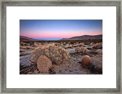 Desert Twilight Framed Print by Peter Tellone