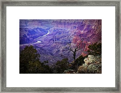 Desert View Sunset Framed Print by Priscilla Burgers