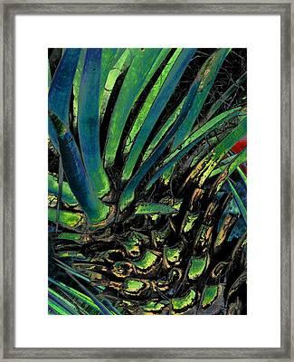 Desert Voodoo Framed Print