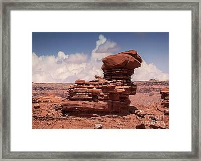 Desert Zen Framed Print by Janice Rae Pariza