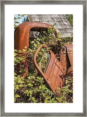 Deserted And Overgrown Framed Print by Monty Cook