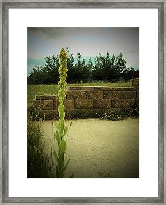 Framed Print featuring the photograph Deserted by Diane Miller