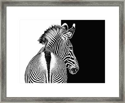 Designed By Nature Framed Print by Joachim G Pinkawa