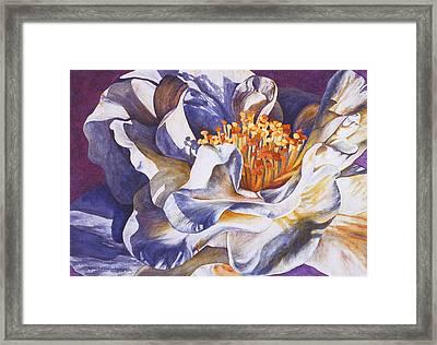 Desirea Framed Print