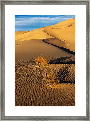 Desolate Perfection  Framed Print by James Marvin Phelps
