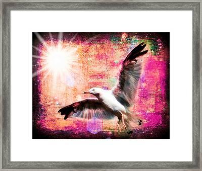 Despite Icarus IIi Framed Print