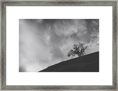 Despite The Pain Framed Print by Laurie Search