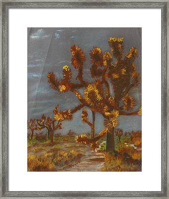 Dessert Trees Framed Print by Michael Anthony Edwards