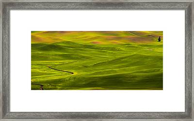 Destination Tree Framed Print