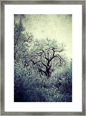 Destiny Framed Print by Leanna Lomanski