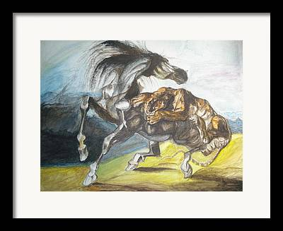 Tiger Attacks An Wild Horse Framed Prints