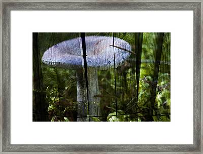 Destroying Angel Framed Print by Nathan Wright