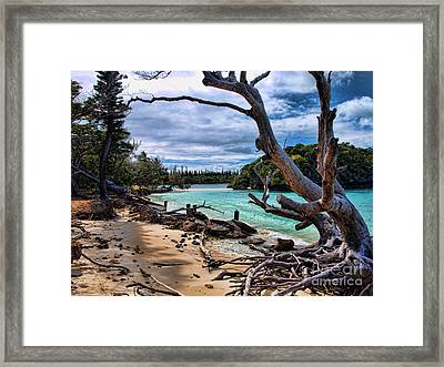 Framed Print featuring the photograph Destruction by Trena Mara