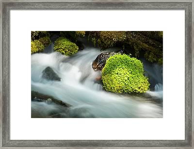 Detail, Clearwater Creek, Clearwater Framed Print
