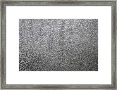 detail of the skin of an Indian rhinoceros in a zoo Netherlands Framed Print by Ronald Jansen