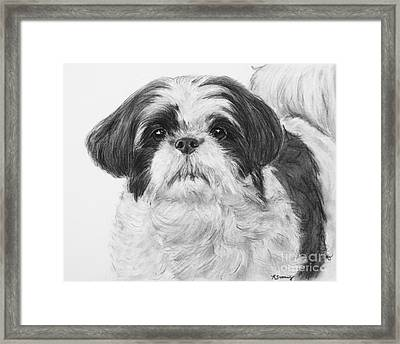 Detailed Shih Tzu Portrait Framed Print