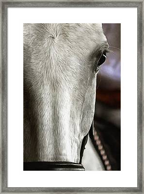 Determination Framed Print by CarolLMiller Photography