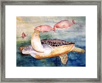 Determined - Loggerhead Sea Turtle Framed Print by Roxanne Tobaison