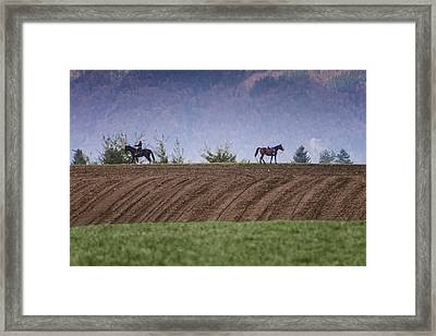 Determintaion Framed Print by Robert Krajnc