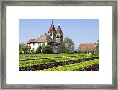 Deutschland, Insel Reichenau Am Framed Print
