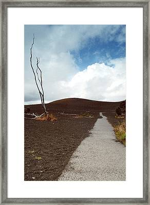 Framed Print featuring the photograph Devastation Trail by Mary Bedy
