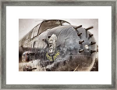 Devil Dog Framed Print by AK Photography