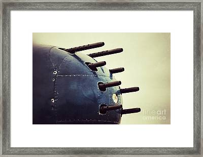 Devil Dog Guns Framed Print by AK Photography