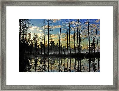Devils Den In The Pine Barrens Framed Print by Louis Dallara